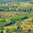 Tuscany landscape — Stock Photo #58896841