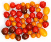 Small tomato — Stock Photo