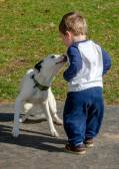 Toddler boy loving his puppy — Stock Photo