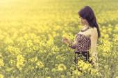 Beautiful woman in meadow of yellow flowers recognizing flower — Stock Photo