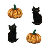 Illustration with black cat and pumpkin — Stock Photo