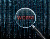 Worm — Stockfoto