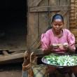 Poor Malagasy woman preparing food in front of cabin — Stock Photo #72067527