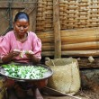 Poor Malagasy woman preparing food in front of cabin — Stock Photo #72067785