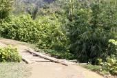 Dusty safari road in Madagascar — Stock Photo
