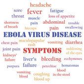 Ebola symptoms — Stock Vector