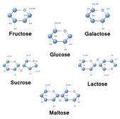 Sugar molecules — Stock Vector