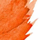 Watercolor drawing web  — 图库矢量图片