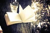 Diary on tree — Φωτογραφία Αρχείου