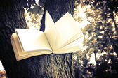Diary on tree — Foto de Stock
