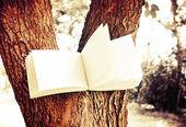 Diary on tree — Stockfoto