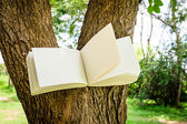 Diary on tree  — Stock Photo