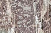古代の絵岩山 — ストック写真