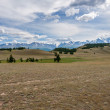 Mountain hills forest steppe — Stock Photo #58469939