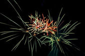 Fireworks selamı — Stok fotoğraf