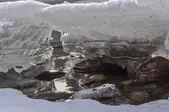 Mountain river ice blocks — Stock fotografie