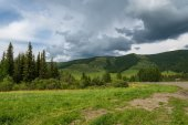 Mountains forest sky road — Stock Photo