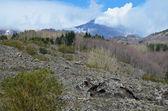 Etna z szczyt palenia i wiosna stoki — Zdjęcie stockowe