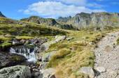 Alpine stream in the Atlantic Pyrenees, Bearn — ストック写真