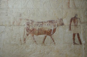Close-up of the ancient Egyptian fresco — Stock Photo