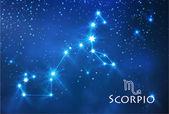 Scorpio zodiac sign — Stock Vector