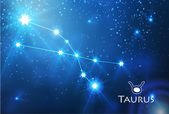 Taurus zodiac sign — Stock Vector