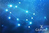 Gemini zodiac sign — Stock Vector