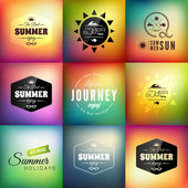 Retro styled summer calligraphic design card set — Stock Vector