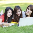 College student lying down on the grass working on laptop — Stock Photo #61750875