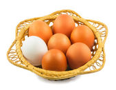 Eggs in a basket isolated on a white background — Stock Photo