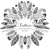 Hand drawn Feathers Frame — Stock Vector
