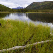 Triple Lakes in Denali National Park — 图库照片 #54743439