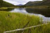 Triple Lakes in Denali National Park — Stock Photo