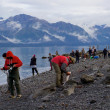 People fishing salmon in Resurrection Bay in Seward — Stok fotoğraf #56529523