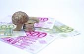 Snail on moneys — Stock Photo