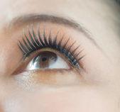 Asian woman eye — Foto de Stock