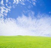Campo de hierba verde en el cielo azul — Foto de Stock