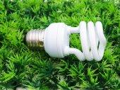 Fluorescence lamp on artificial grass — Foto de Stock