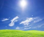 Herbe verte sur le ciel bleu — Photo