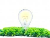 Incandescence light bulb on white  — Stock Photo