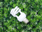 Incandescence light bulb on artificial grass — Stock Photo