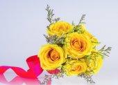 Beautiful yellow rose on white — Stock Photo