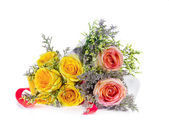 Yellow rose and ribbon on white — Стоковое фото