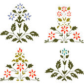 Vector illustration set blooming plant with flowers and leaf on white — Stockvektor
