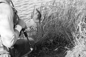 Fisherman holding fish — Stock Photo