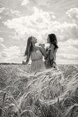 Girls standing in a wheat field — Zdjęcie stockowe