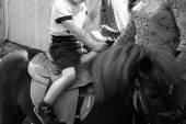 Pônei de equitação de menino — Fotografia Stock