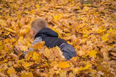 Little boy playing with autumn leaves — Stock Photo