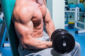 Muscular man working out with dumbbells — Stock Photo