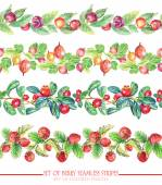Set with seamless ornamental floral and berries stripes.  — Foto Stock